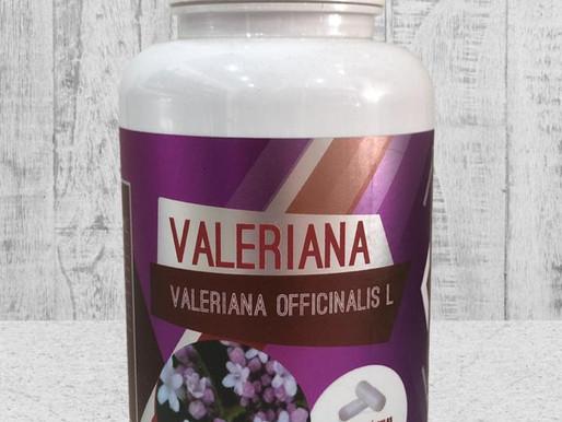 Valeriana é muito mais do que um calmante