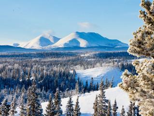40 anos perdidos na Sibéria