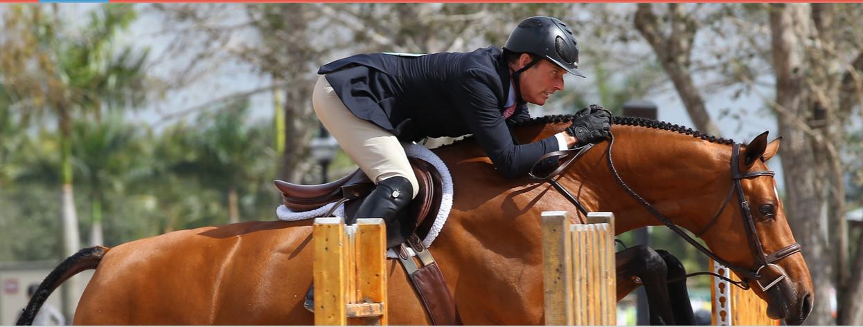 Rider%20on%20Horse%20Jumping%20-%20Wide_