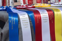 Shapley's Ribbons