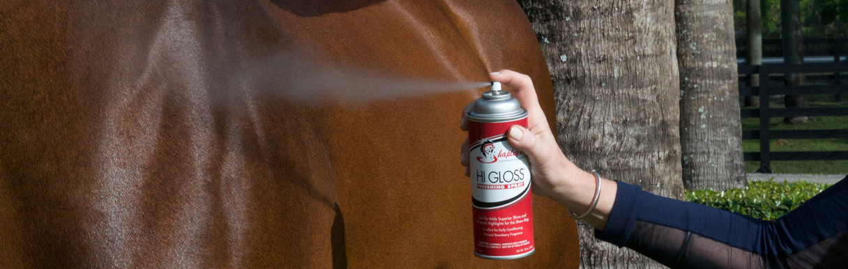 Hi Gloss sPRAYING on horse.jpg