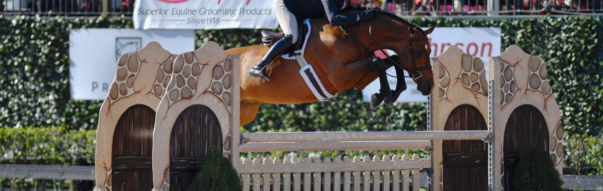 Horse Jump with Rider Zoomed out (Shaple