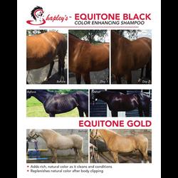 Equitone Ad 2