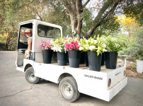 Our new farm truck TITO!
