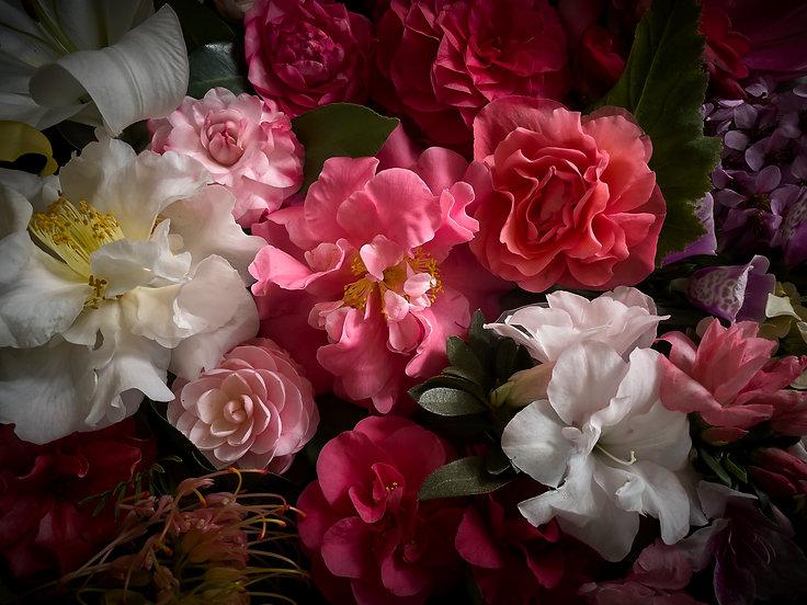021321_Blooms_0129.jpg