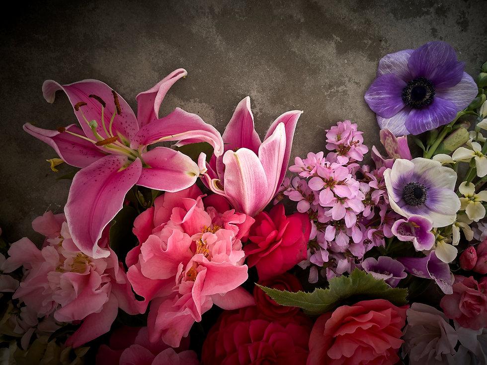 021321_Blooms_0136.jpg
