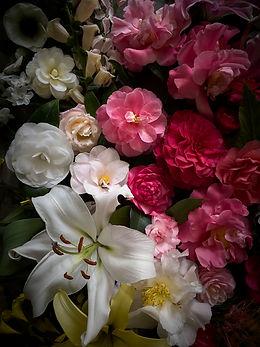 021321_Blooms_0127.jpg
