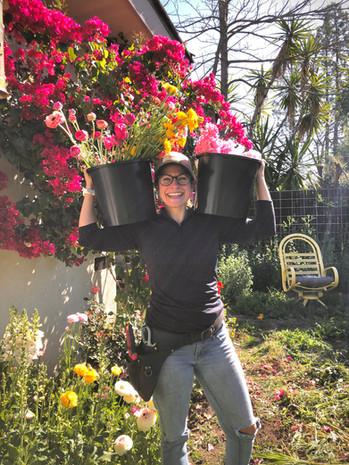 Jenettes bucket balance