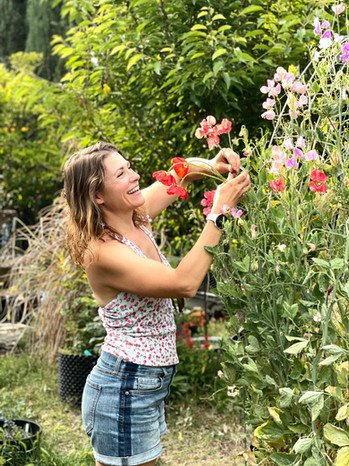 Jenette harvesting sweet p