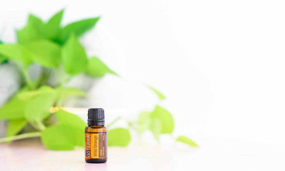 Wild Orange Essential Oil Sample from LeoTree Wellness