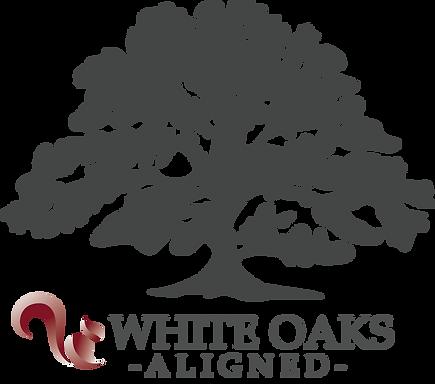 White Oaks Alignd big logo, company values