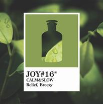 Joy 16 CALM&SLOW.webp