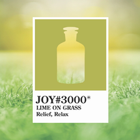 Joy 3000 Lime On Grass.webp