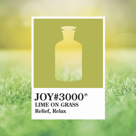 Joy 3000 Lime On Grass.webp