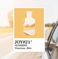 Joy 21 Sunshine.webp