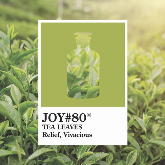 Joy 80 tea leaves.webp