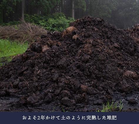 motohi_03.jpg