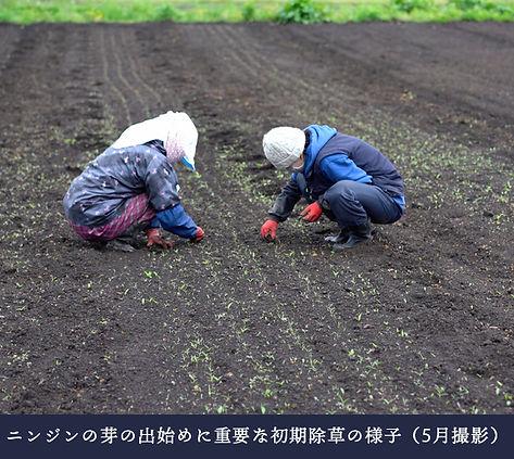 munouyaku_02 (1).jpg