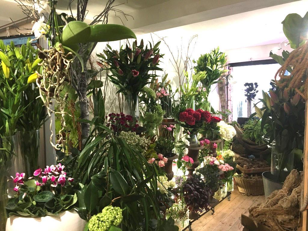 Twig Flower Wall 1/11/18