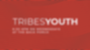 tribesyouth slide.png