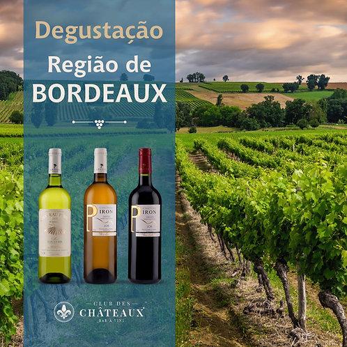 Degustação para apaixonados - Região de Bordeaux
