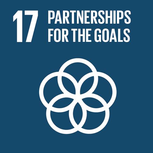 17 Partnerships.png
