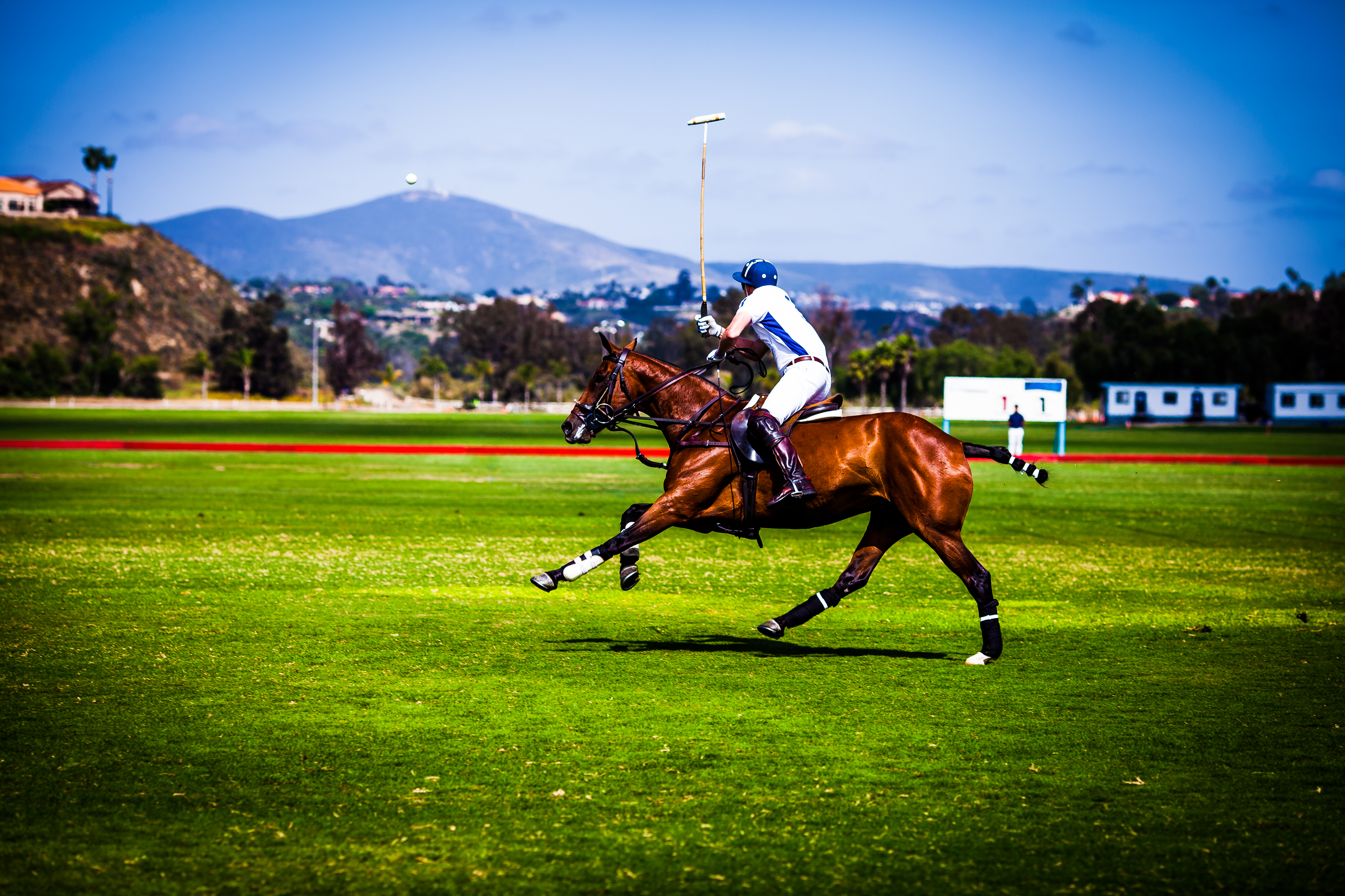 Opening Day Polo