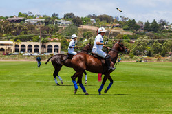two men palying polo