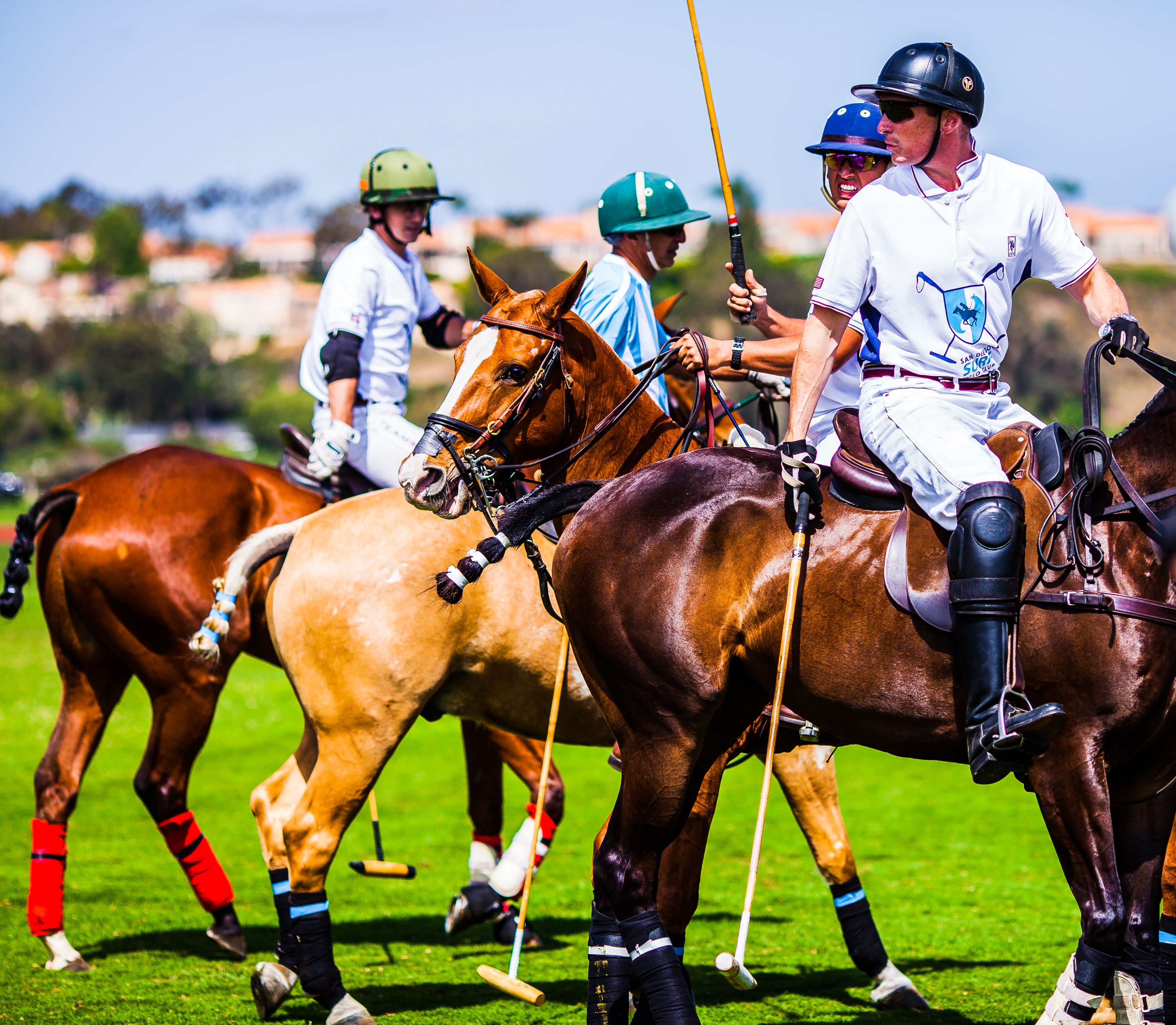 Opening Day Polo Men
