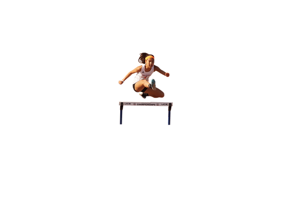 hurdle.png