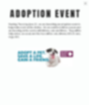 Adoption event flyer.png