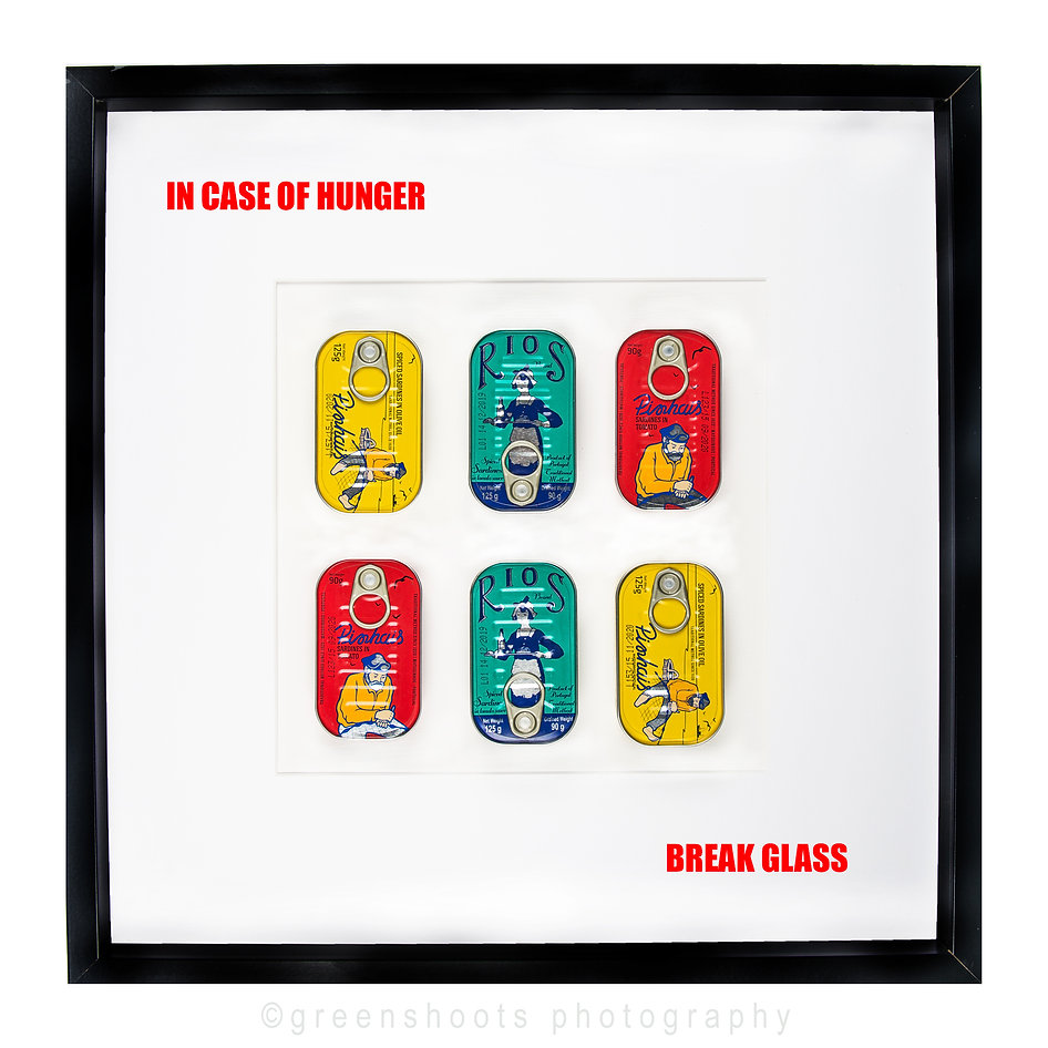"""Colourful cans of sardines mounted in a picture frame together with the words """"in case of hunger break glass"""""""
