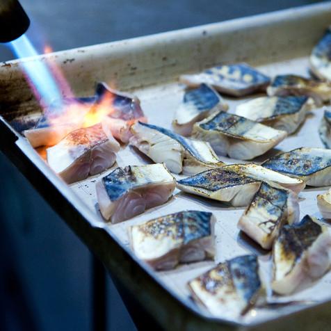 Searing Mackerel