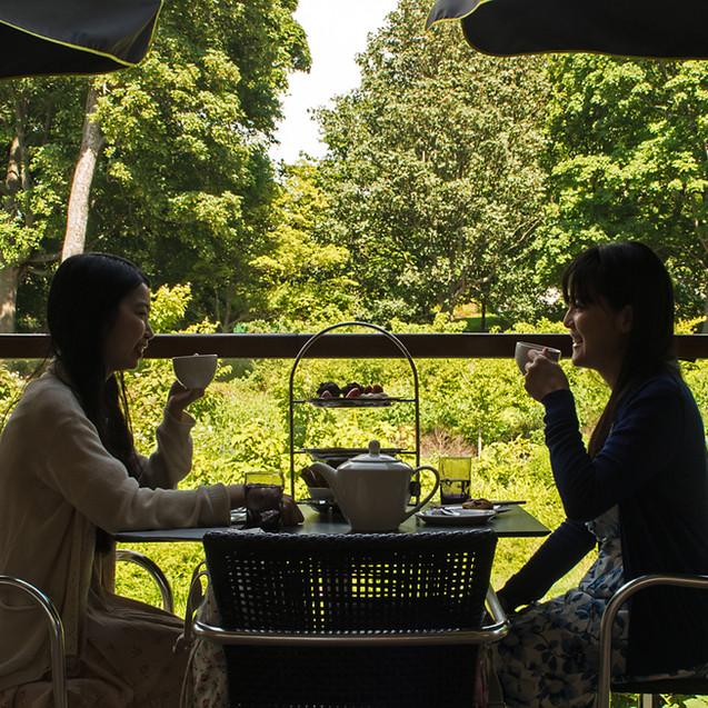 Afternoon Tea at the Botanics