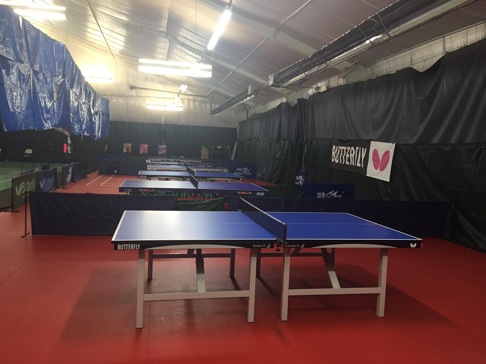 LISC Table Tennis