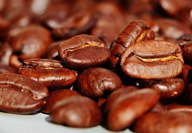 Café , dr Leo Kahn