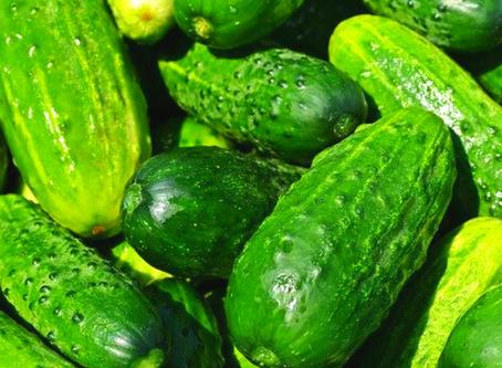 Pepino - Auxilia a saúde muscular e Dietas de Emagrecimento