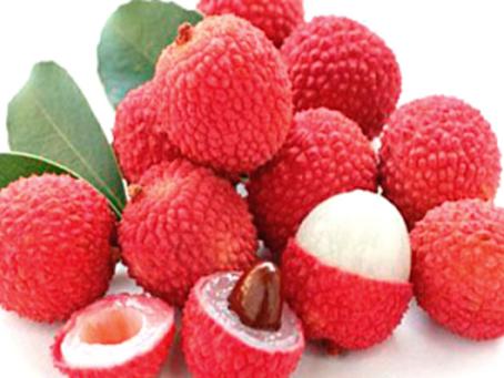 Lichia - Está diretamente ligado à redução da Gordura Intra Abdominal