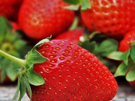 Morango - Ajuda em dietas de Emagrecimento