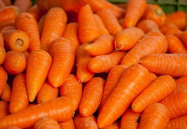 cenoura, dr leo kahn