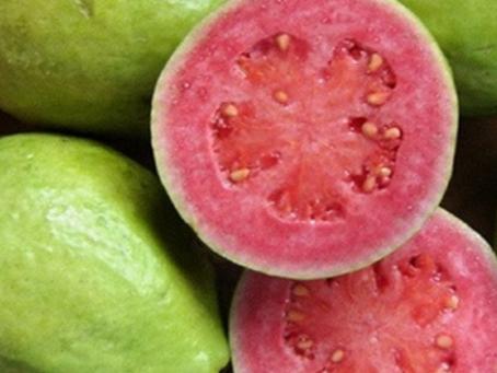 Goiaba - Fortalece o sistema imunológico e é Anti-inflamatória