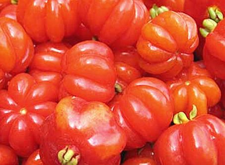 Pitanga - Sua Fruta contém um poderoso Antioxidante e suas folhas melhoram a Cistite.