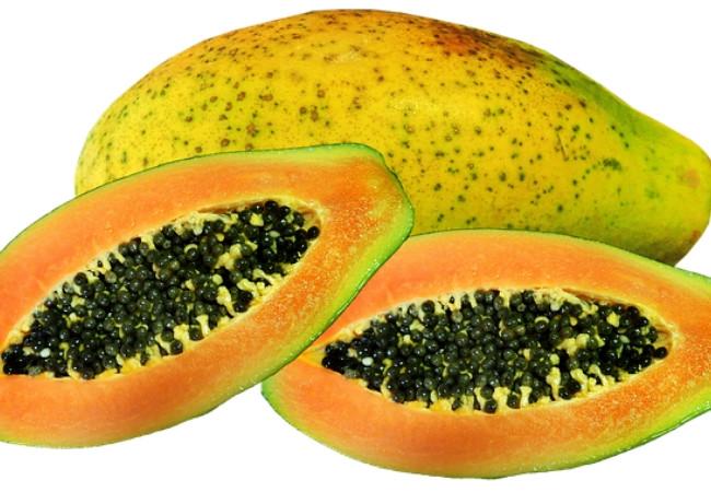 Alimentos Anti Escleróticos