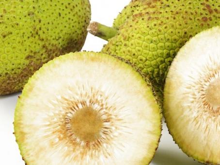 Fruta Pão - Ajuda nas dietas de Emagrecimento e é Energético.