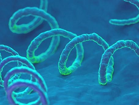 Sífilis - Doença geralmente sexualmente transmissível