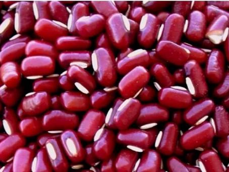 Feijão Azuki - Aumenta a Massa Muscular e controla a Glicemia