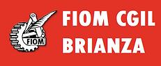 FIOM CGIL BRIANZA.png