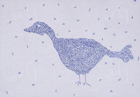 ציפור מבוך