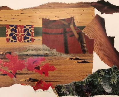 Red leaves & desert scene, 2003