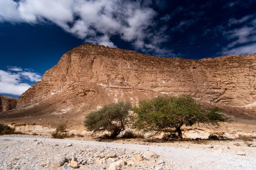 Nachal Barak - Arava Desert, Israel
